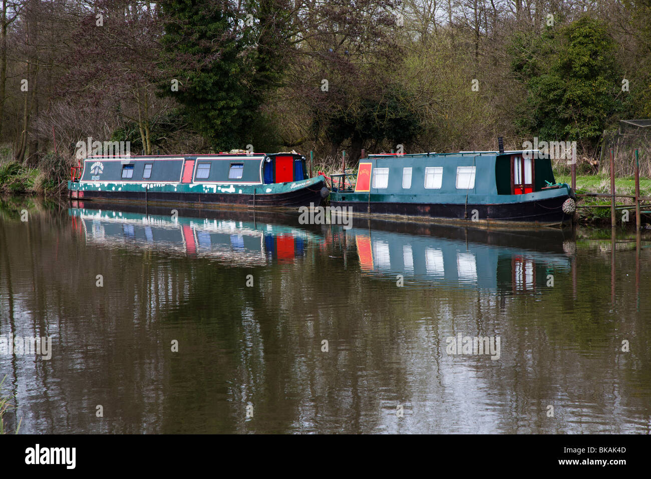 Two narrow barges tied up on the wey navigation surrey - Stock Image