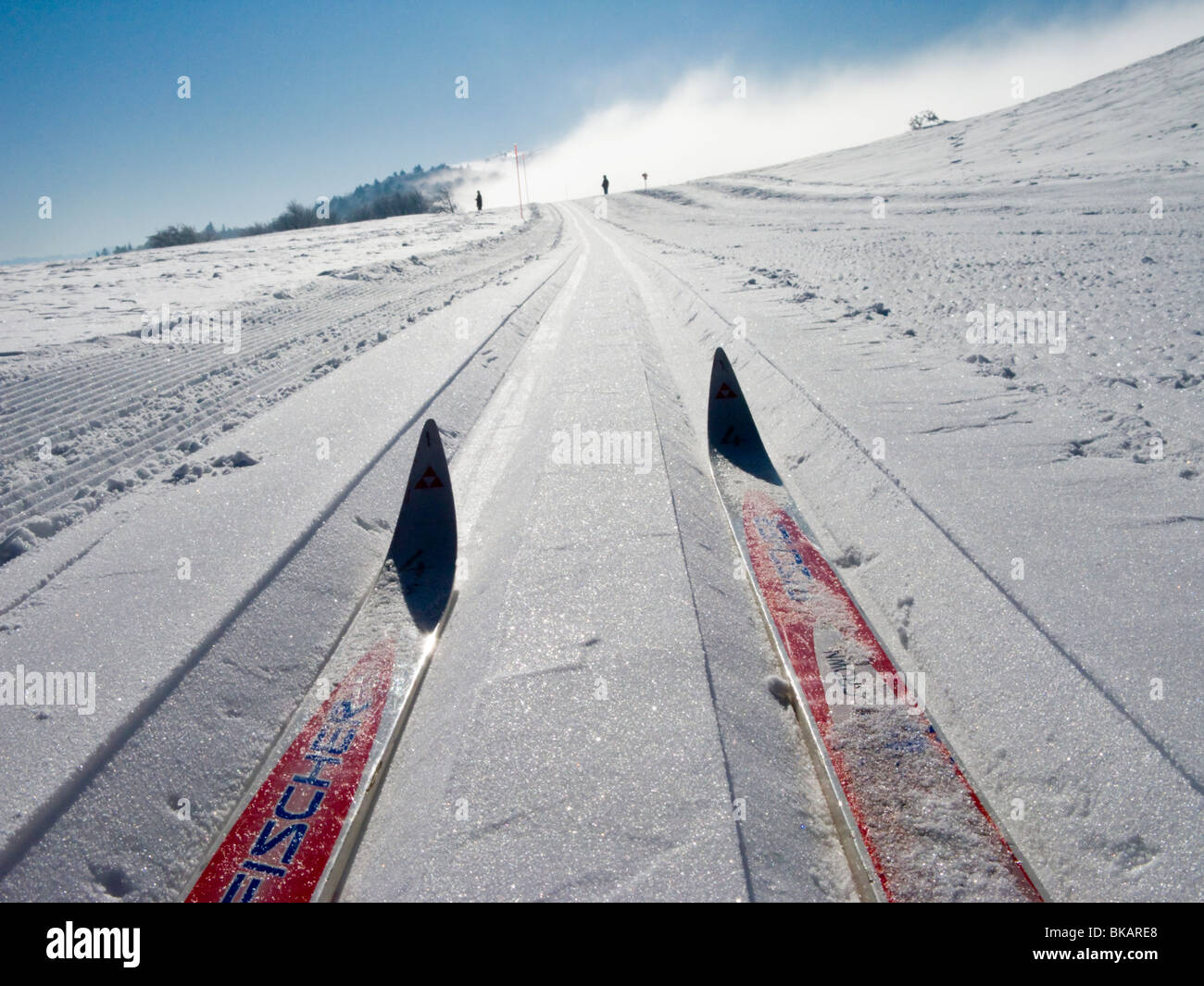 Cross country ski / skis on a skier groove track in the French Alpine resort of Plateau De Sur Lyand. Ain department - Stock Image