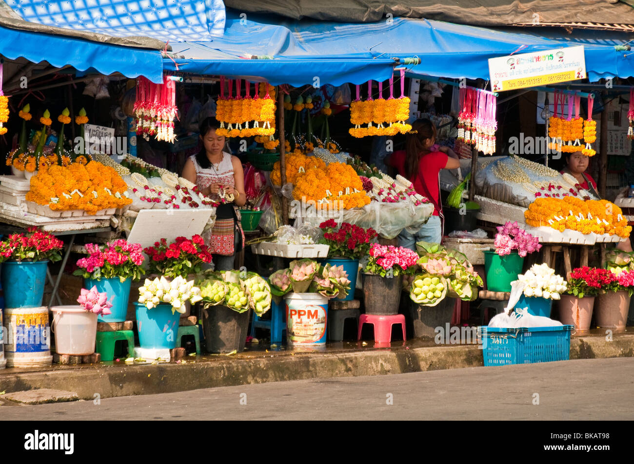 Flower vendors at marketplace near Chinatown and Ping River, Chiang Mai, Thailand. - Stock Image