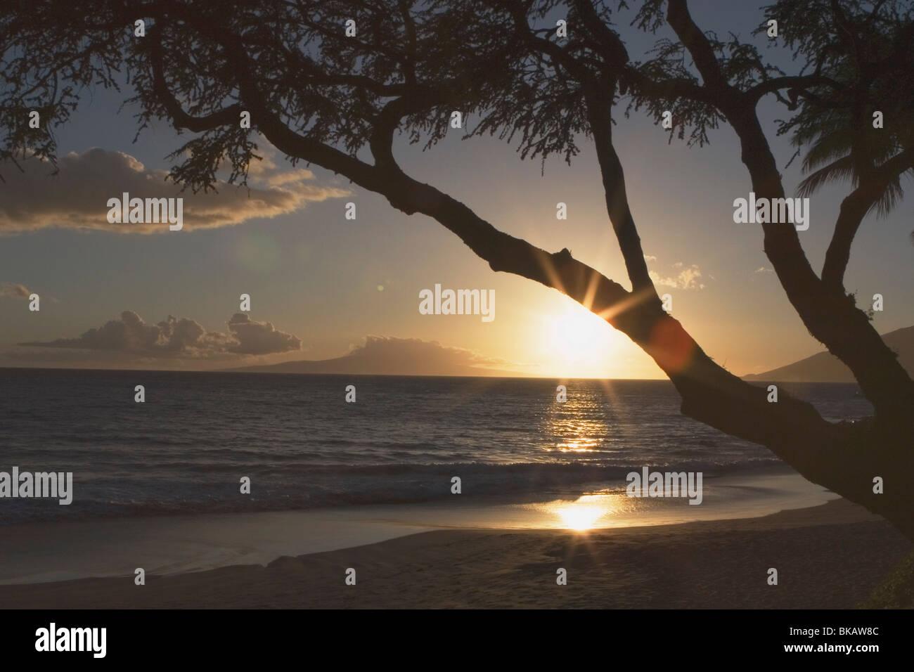 Southwest Maui, Hawaii, Usa - Stock Image