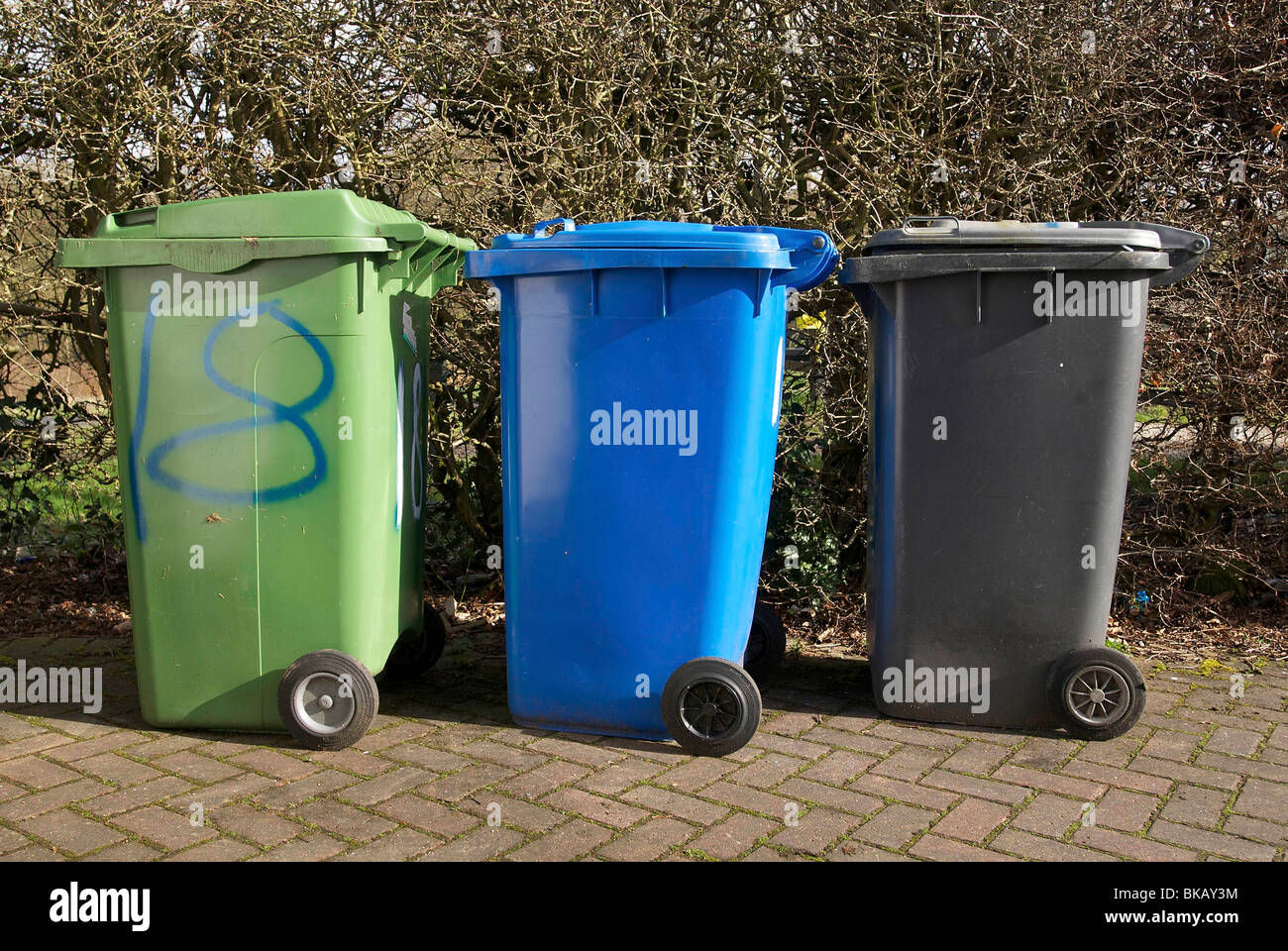 Three wheelie bins green blue and black for domestic refuse collection. Stock Photo