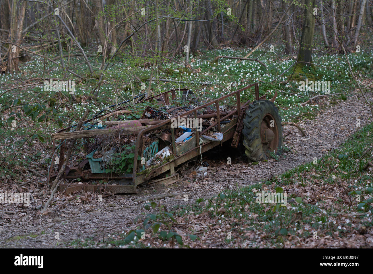 abandoned dung spreader - Stock Image
