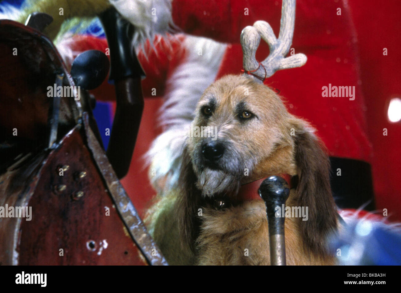 how the grinch stole christmas 2000 howt 007 stock image - How The Grinch Stole Christmas 2000 Cast