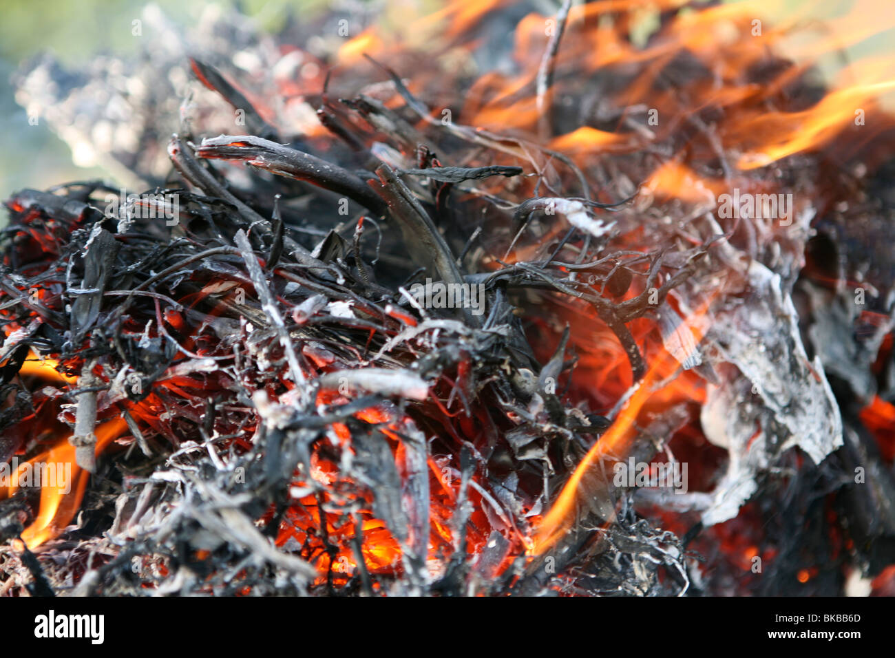 Close up of a garden bonfire - Stock Image