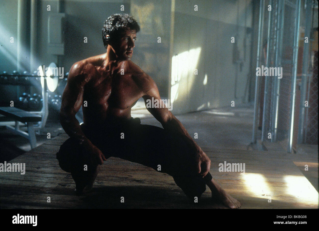 The Specialist 1994 Sylvester Stallone Sclt 069 Stock Photo Alamy