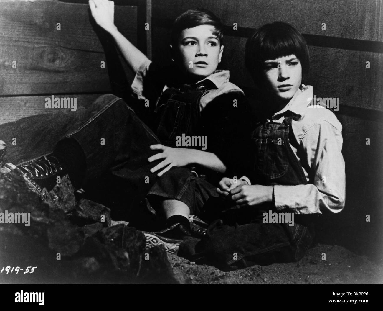 TO KILL A MOCKINGBIRD (1962) PHILLIP ALFORD, MARY BADHAM TKM 022P - Stock Image