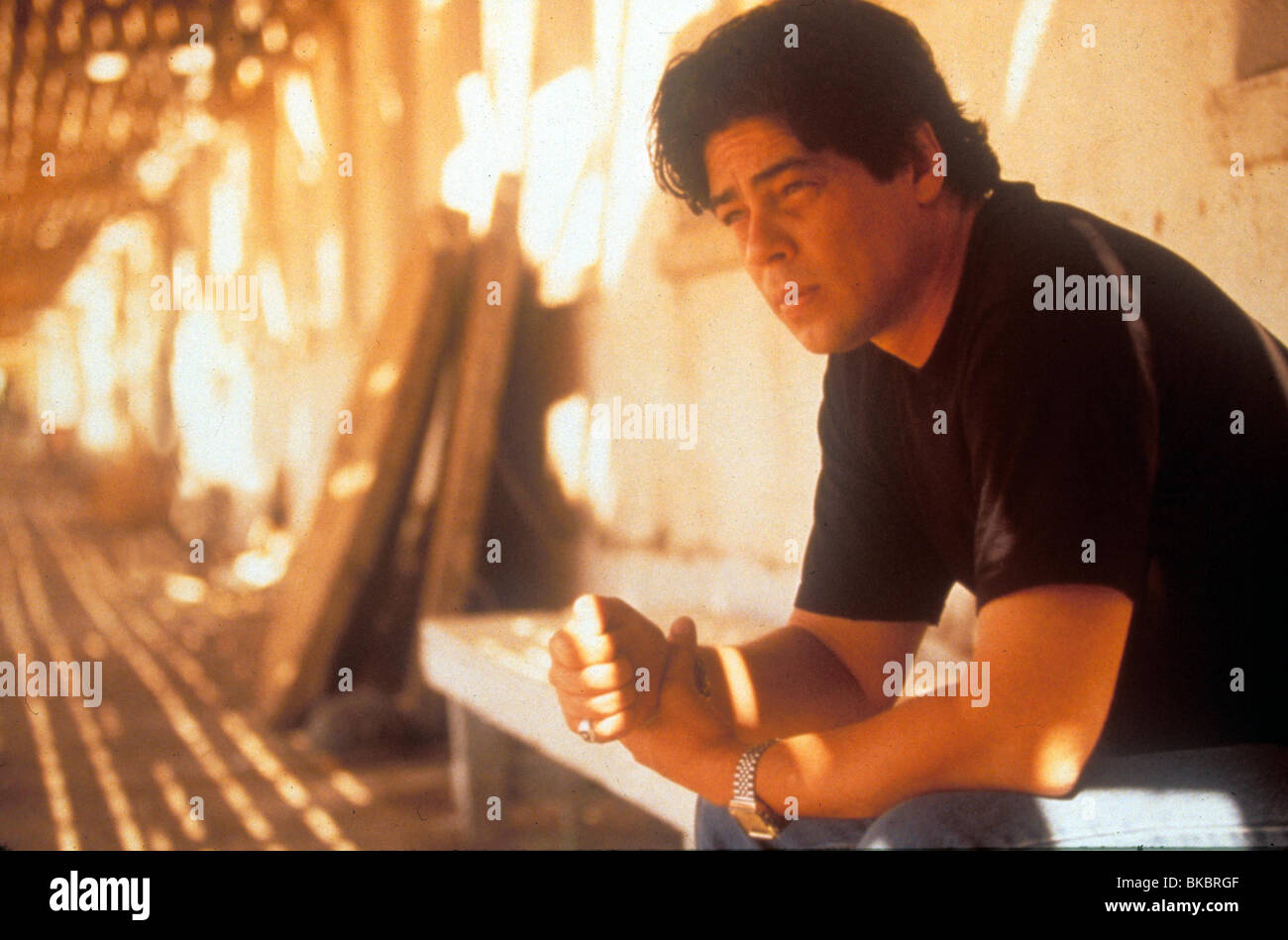 Traffic 2000 Benicio Del Toro Traf 029 Ltd Stock Photo Alamy