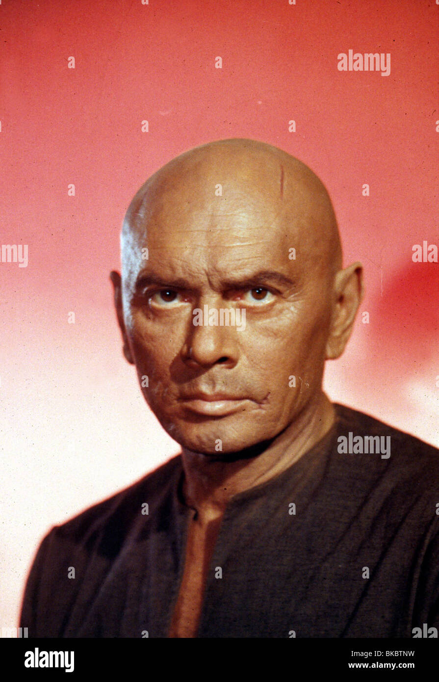 THE ULTIMATE WARRIOR (1975) YUL BRYNNER ULW 016 - Stock Image