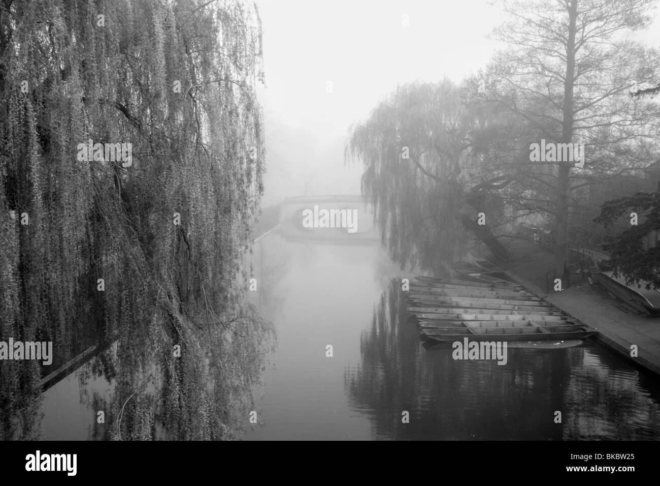 Misty morning on the River Cam, Cambridge,  with view towards Trinity Bridge - Stock Image