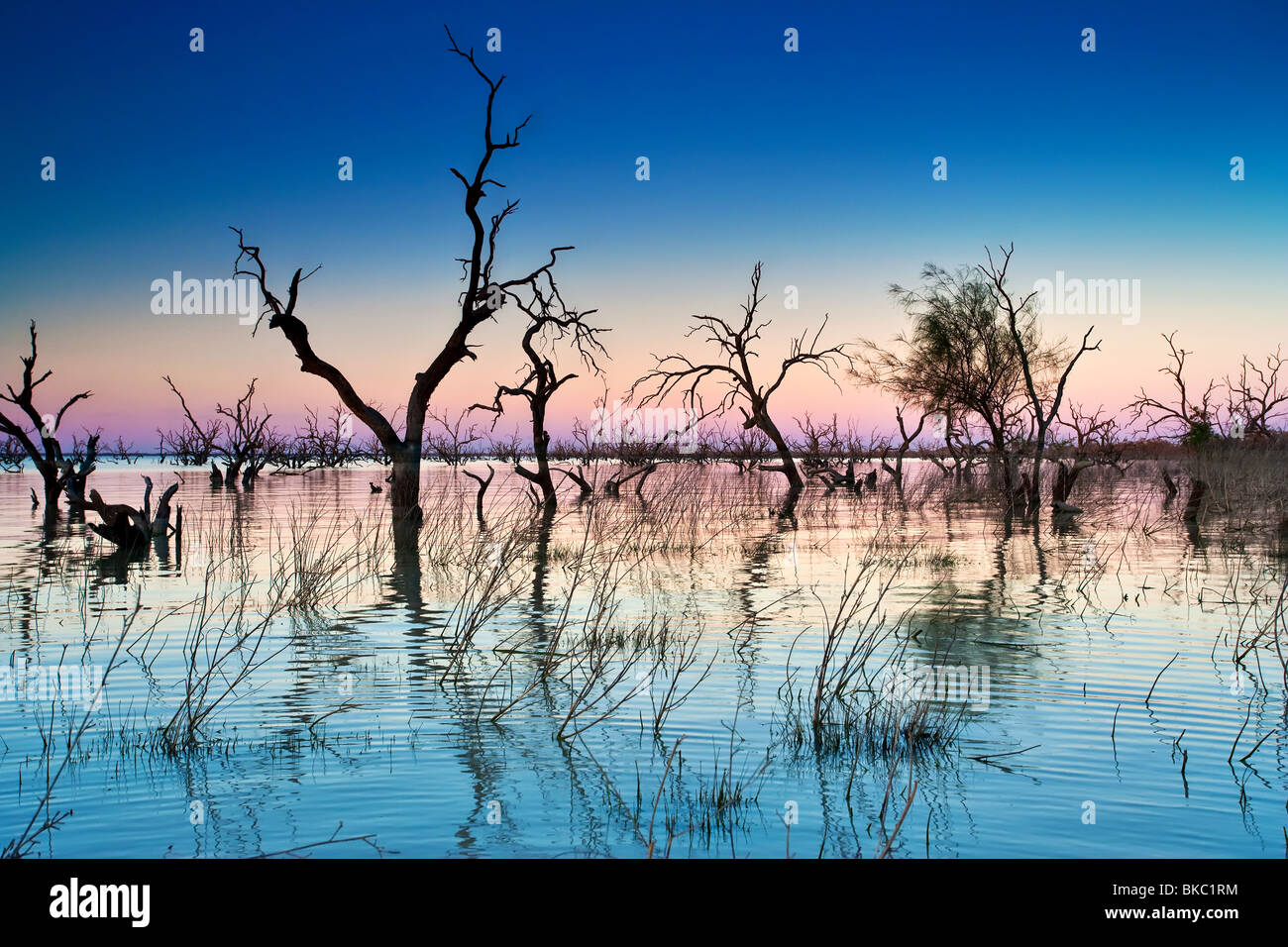 Lake Pamamaroo - Stock Image