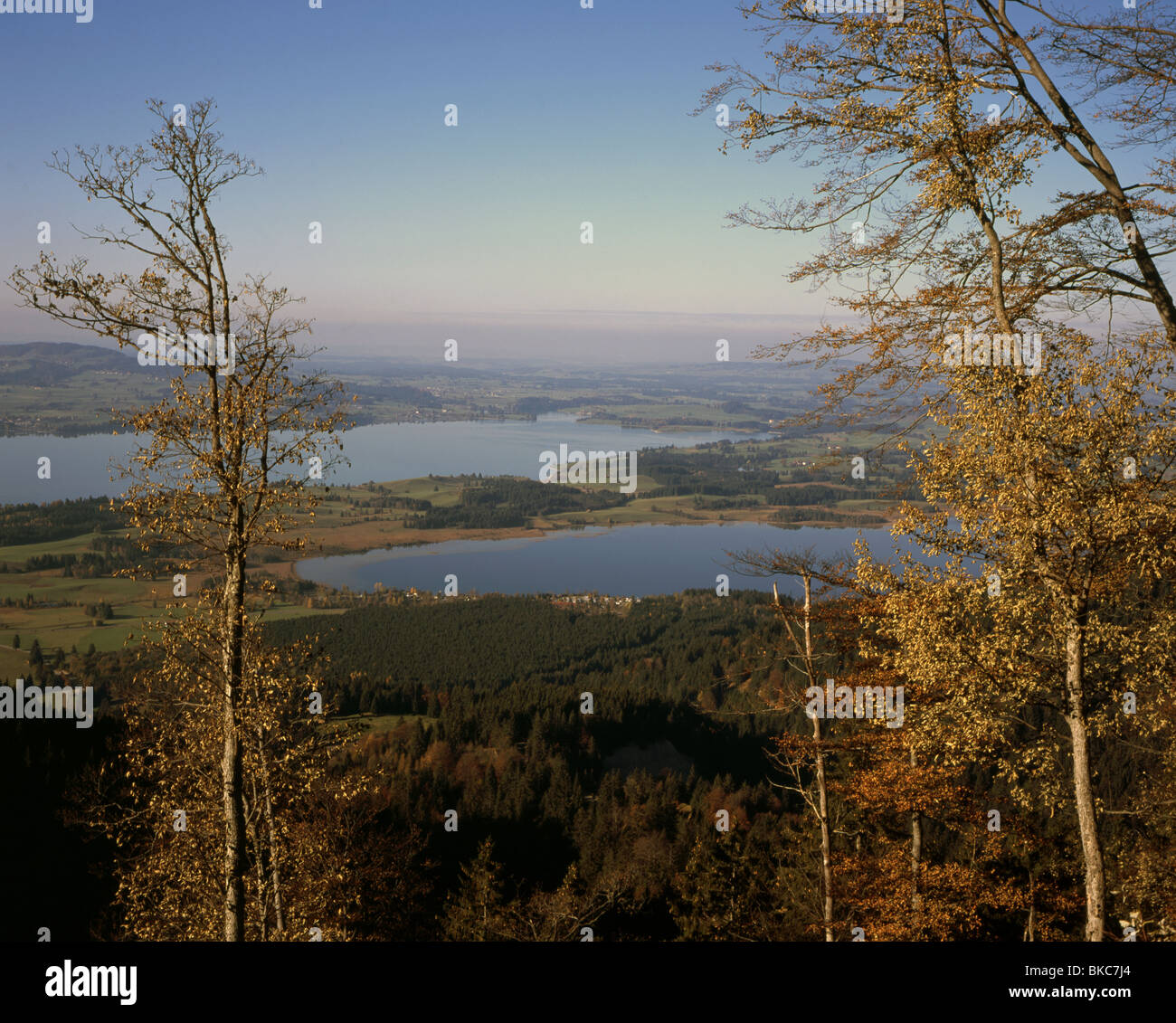 The Bannwald See and The Forggen See Autumn Fussen Bavaria germany Stock Photo