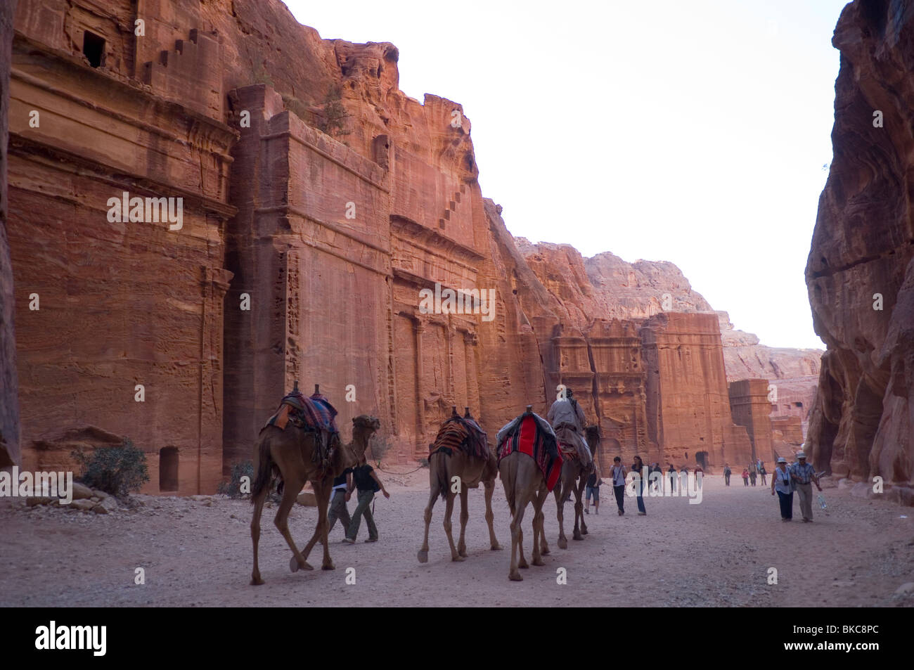 Tourists and camels in the 'Street of Facades' in Petra, Jordan - Stock Image