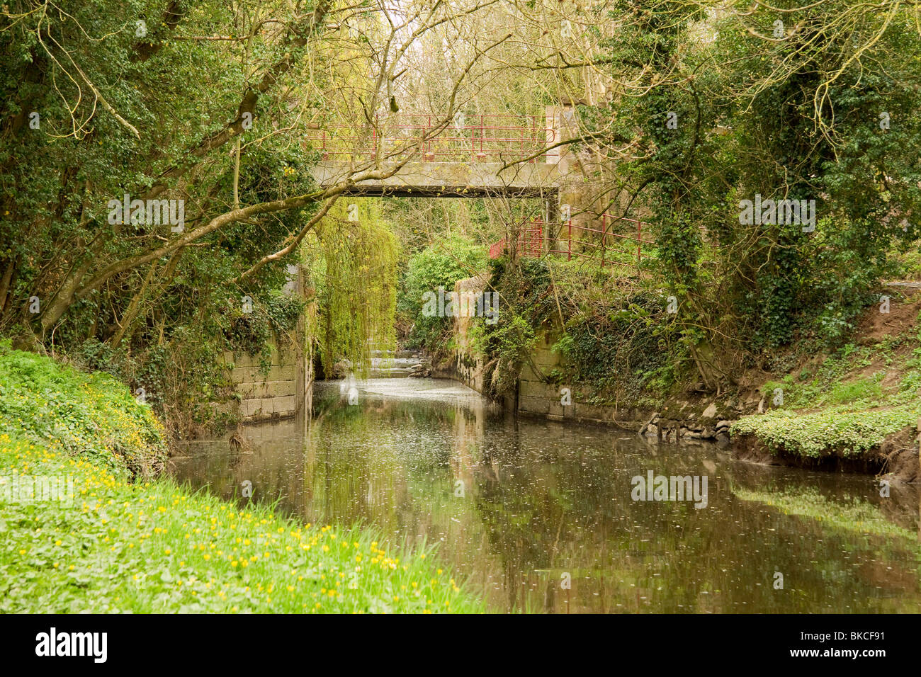 The old disused canal lockgates at Moneypenny's lock on the Newry to Portadown canal - Stock Image