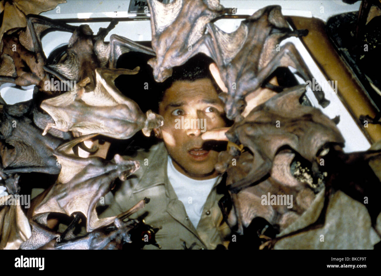 BATS -2000 LOU DIAMOND PHILLIPS - Stock Image