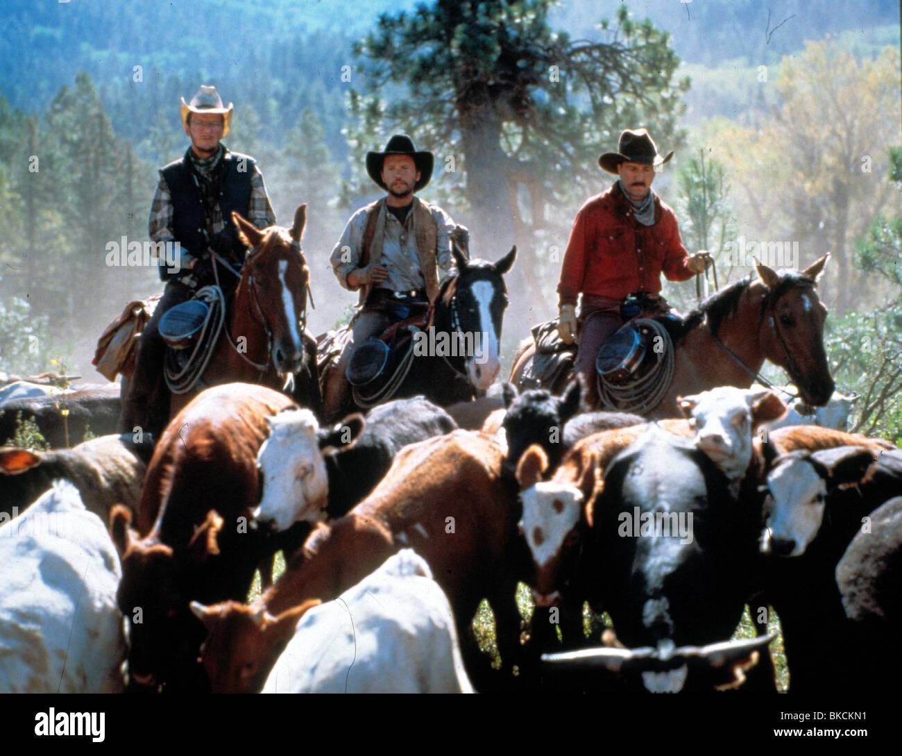 City Slickers 1991 Daniel Stern Billy Crystal Bruno Kirby Cts 019 Stock Photo Alamy