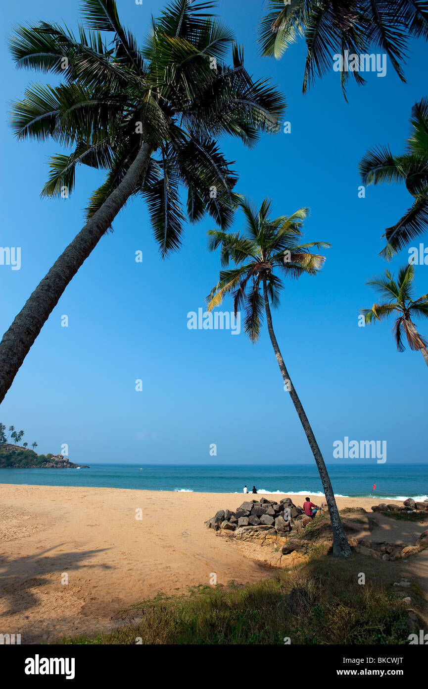 Ashok Leela Beach with Coconut Palm trees, Kovalam, Kerala, India - Stock Image