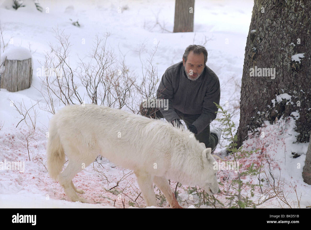 THE HUNTED (2003) TOMMY LEE JONES HNTE 001-1096 - Stock Image