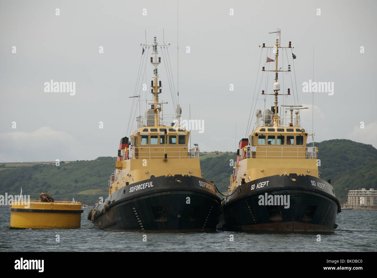 The SD Forceful and SD Adept tugboats, Plymouth Sound, Devon, England, UK - Stock Image