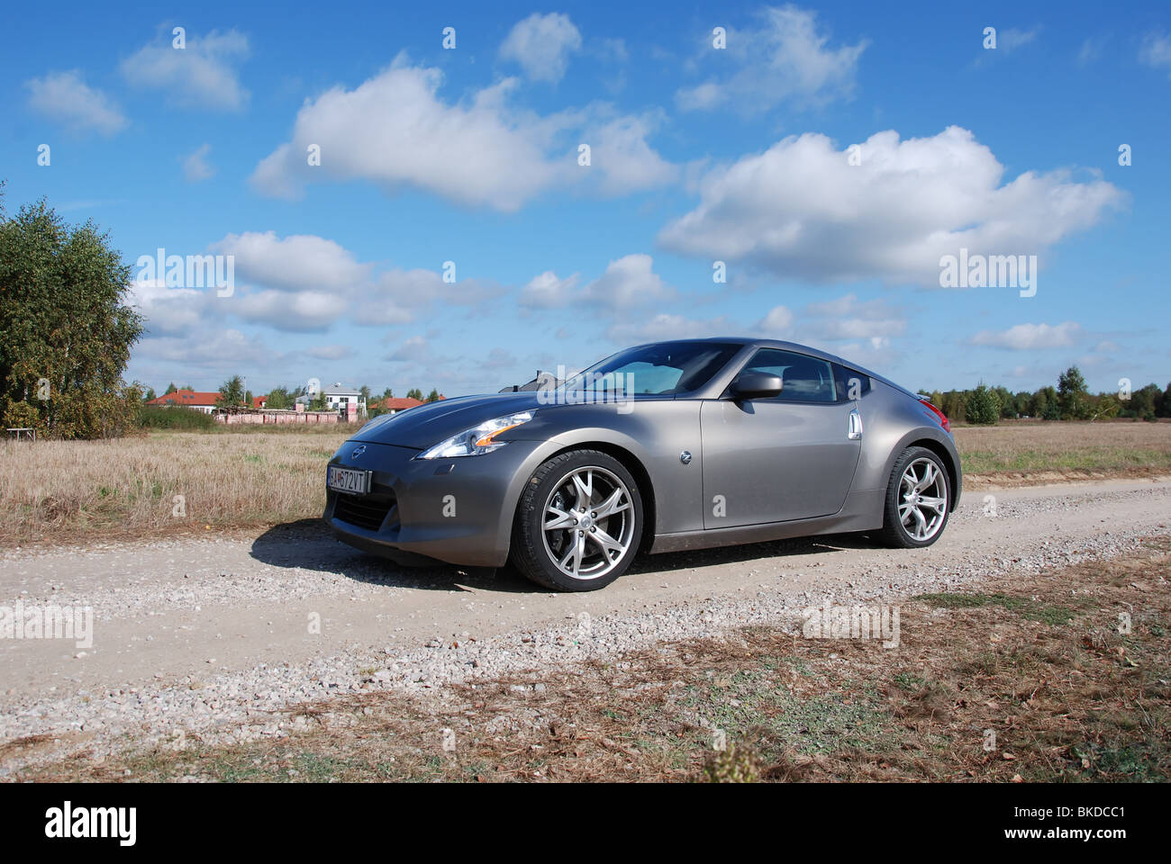 Nissan 370Z   2009   Gray Metallic   Two Doors (2D)   Japan Popular