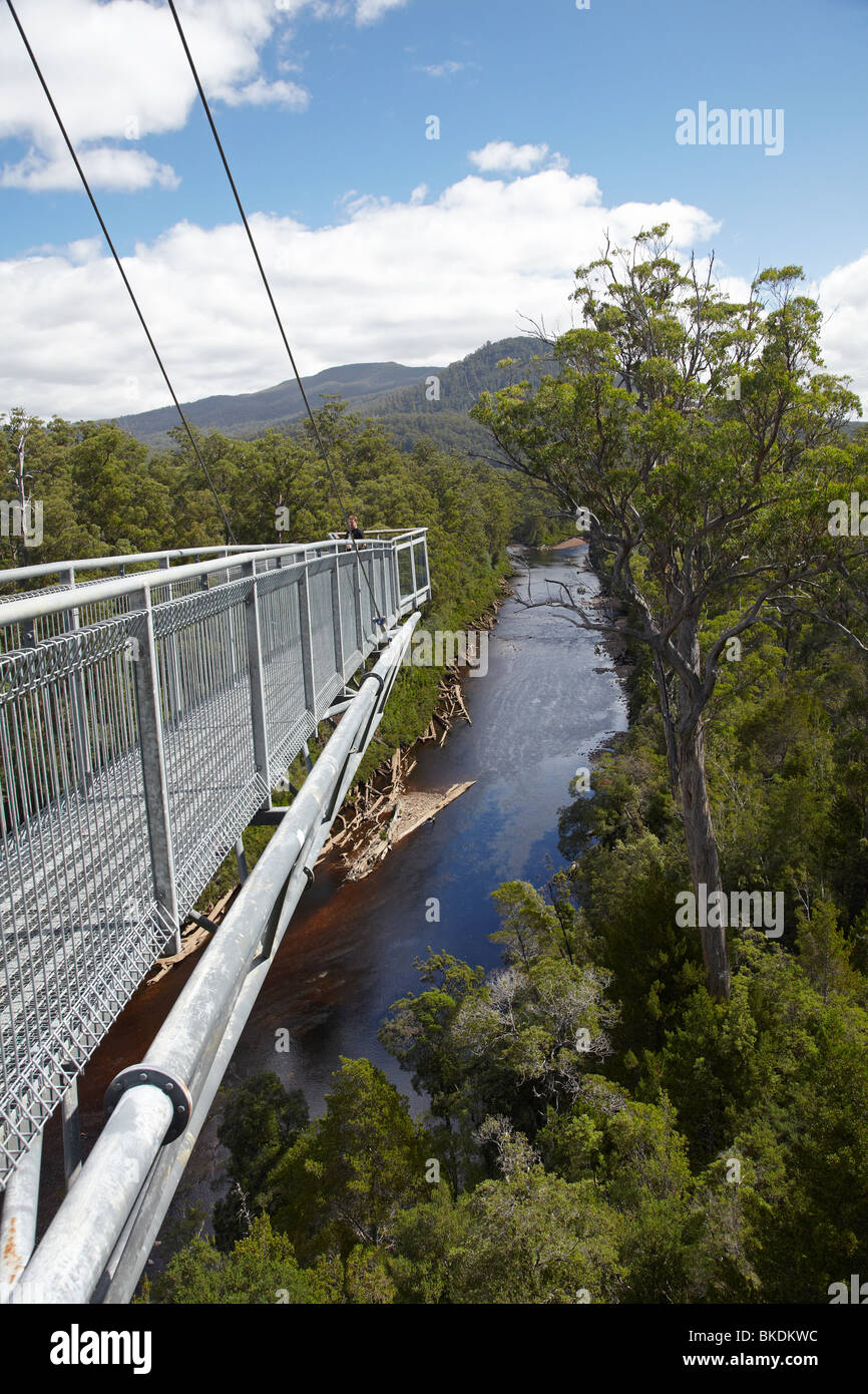 Cantilever, Tahune AirWalk, 48 metres above Huon River and Forest, Tahune Forest Reserve, Southern Tasmania, Australia - Stock Image