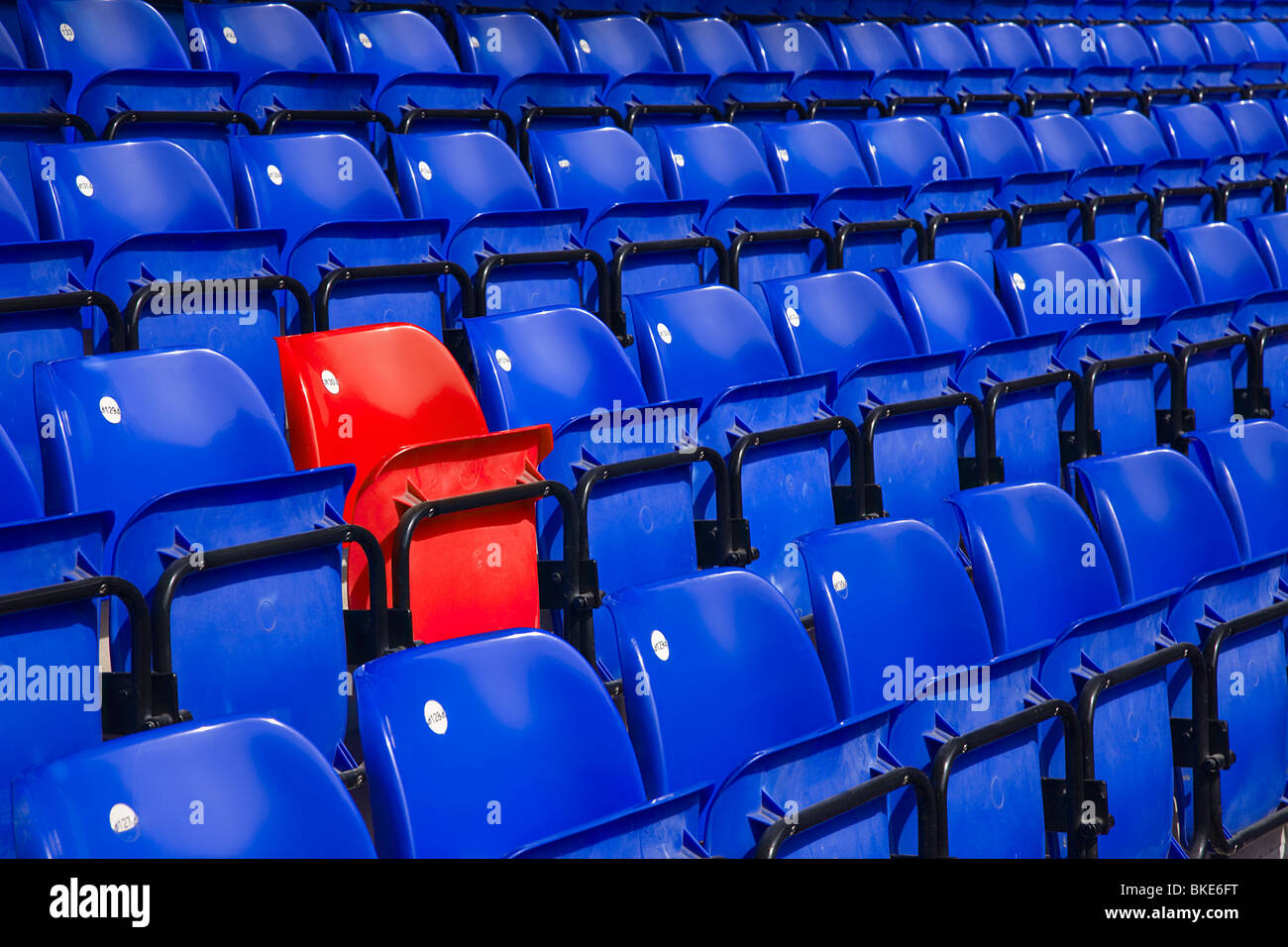 empty stadium with blue seating with one red seat - Stock Image