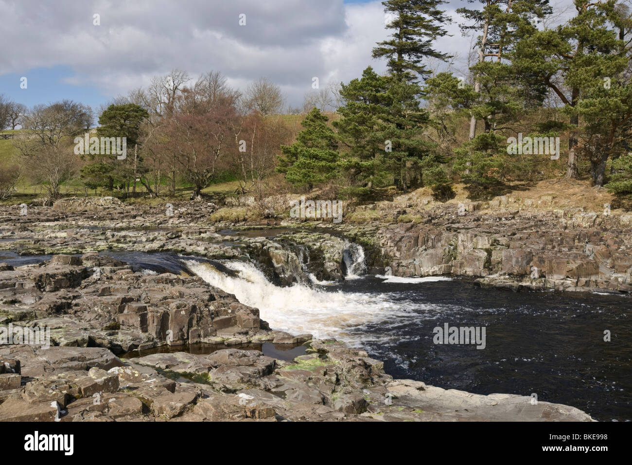 Low Force, Upper Teesdale, UK - Stock Image