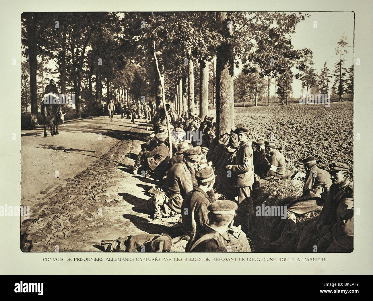 WW1 convoy with German prisoners resting along road in West Flanders during the First World War One, Belgium Stock Photo