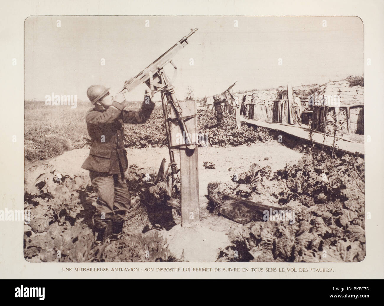 Belgian WW1 soldiers in trench armed with anti-aircraft guns