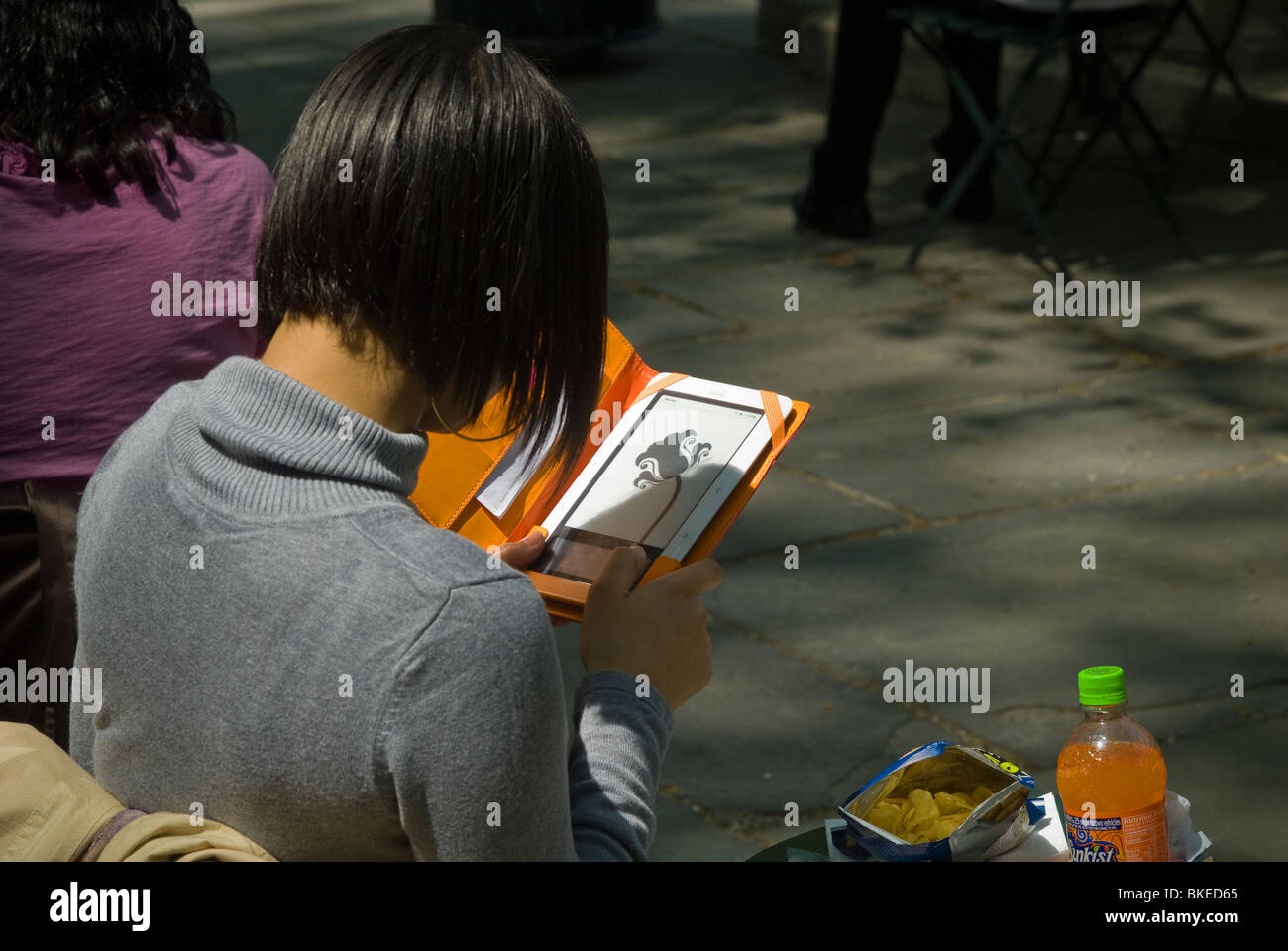 A reader uses her Barnes & Noble Nook electronic book reader in Bryant Park in New York - Stock Image