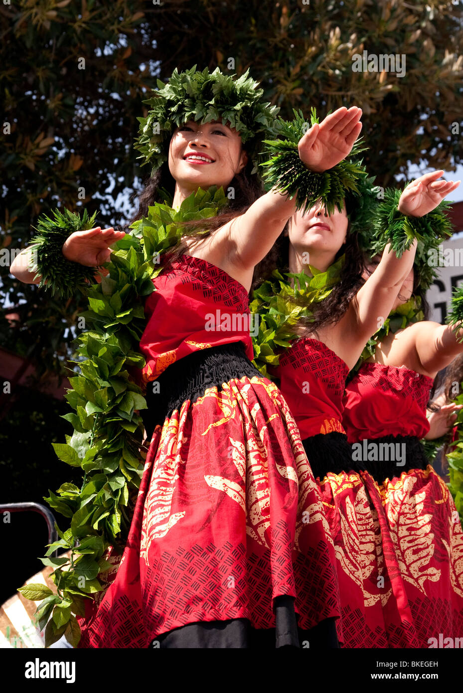 Hawaiian Hula Dancers - Stock Image