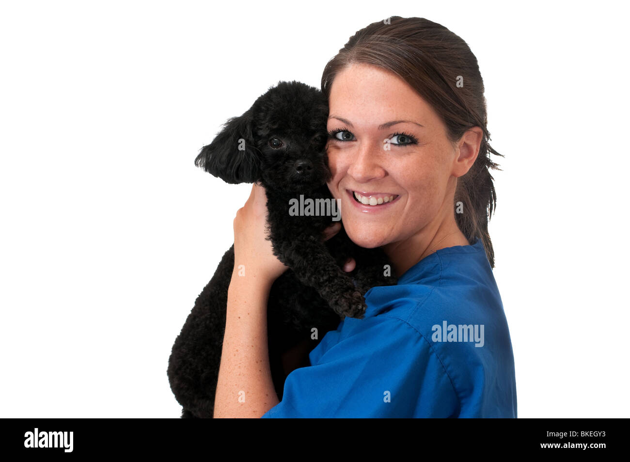 Veterinary assistant holding pet dog isolated. - Stock Image