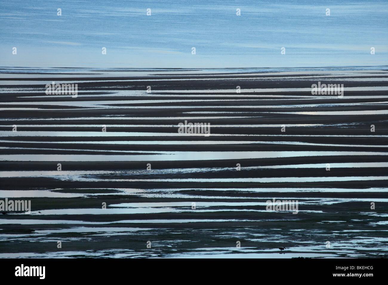 Puddles on Tidal Flats at Low Tide, Perkins Bay, near Stanley, Northwest Tasmania, Australia - Stock Image