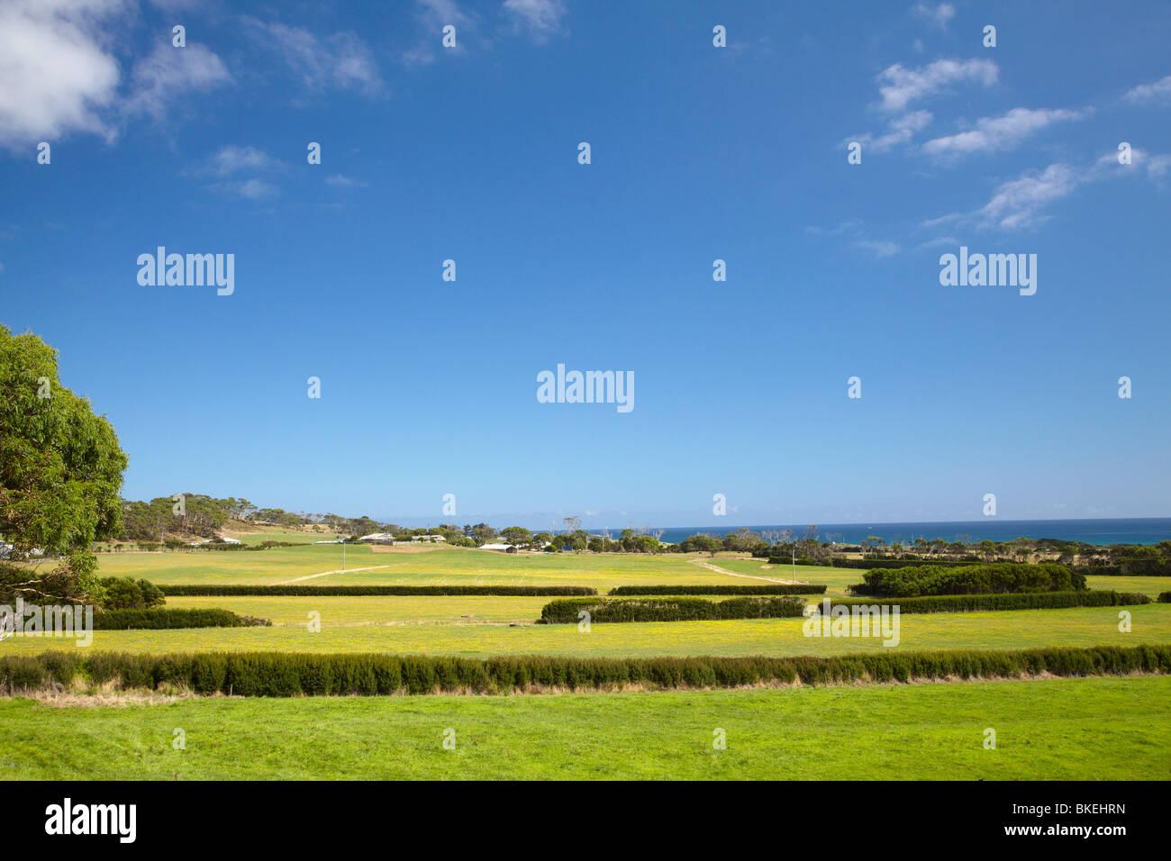 Farmland, Marrawah, North Western Tasmania, Australia Stock Photo