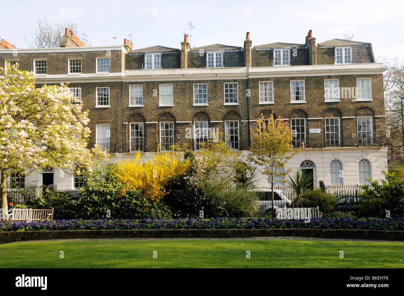 Canonbury Square gardens with Georgian houses behind Islington London England UK - Stock Image