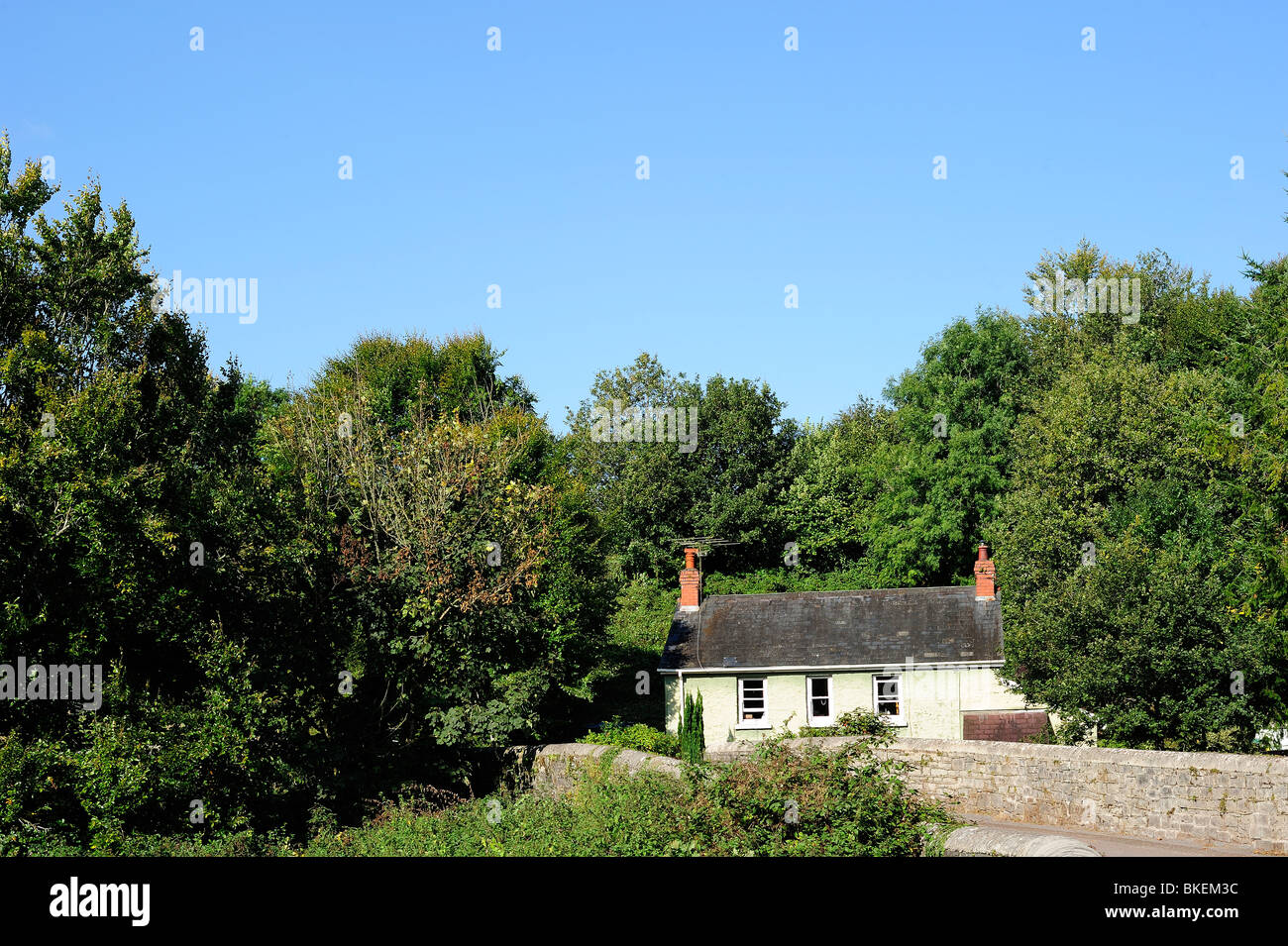 A tiny country cottage, completely surrounded by greenery, under a summer sky. Space for text in the sky. Stock Photo