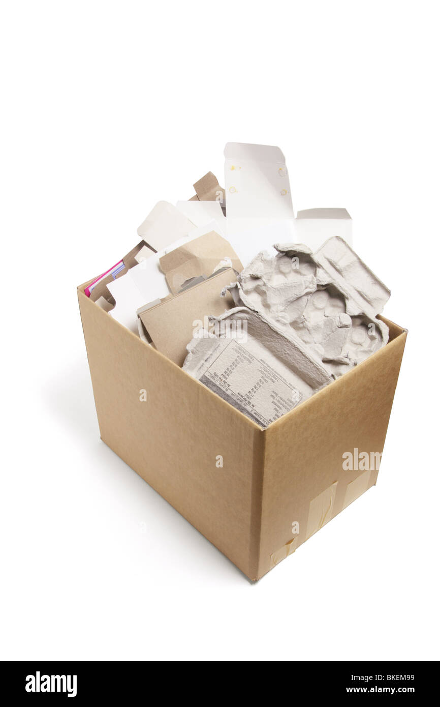 Waste Paper Products in Cardboard Box - Stock Image