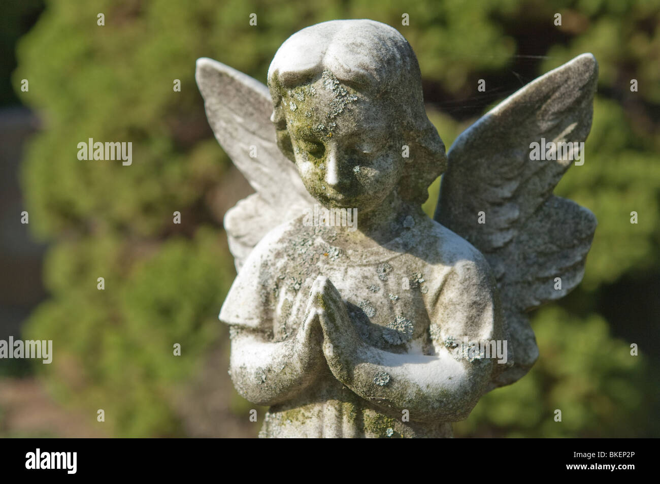 A statue of a childlike angel gently clasps its' hands in silent eternal prayer. - Stock Image