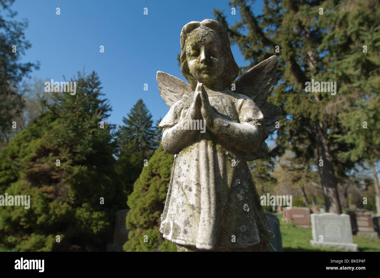 A statue of an angelic child is frozen in time with  its' hands clasped in silent prayer. - Stock Image