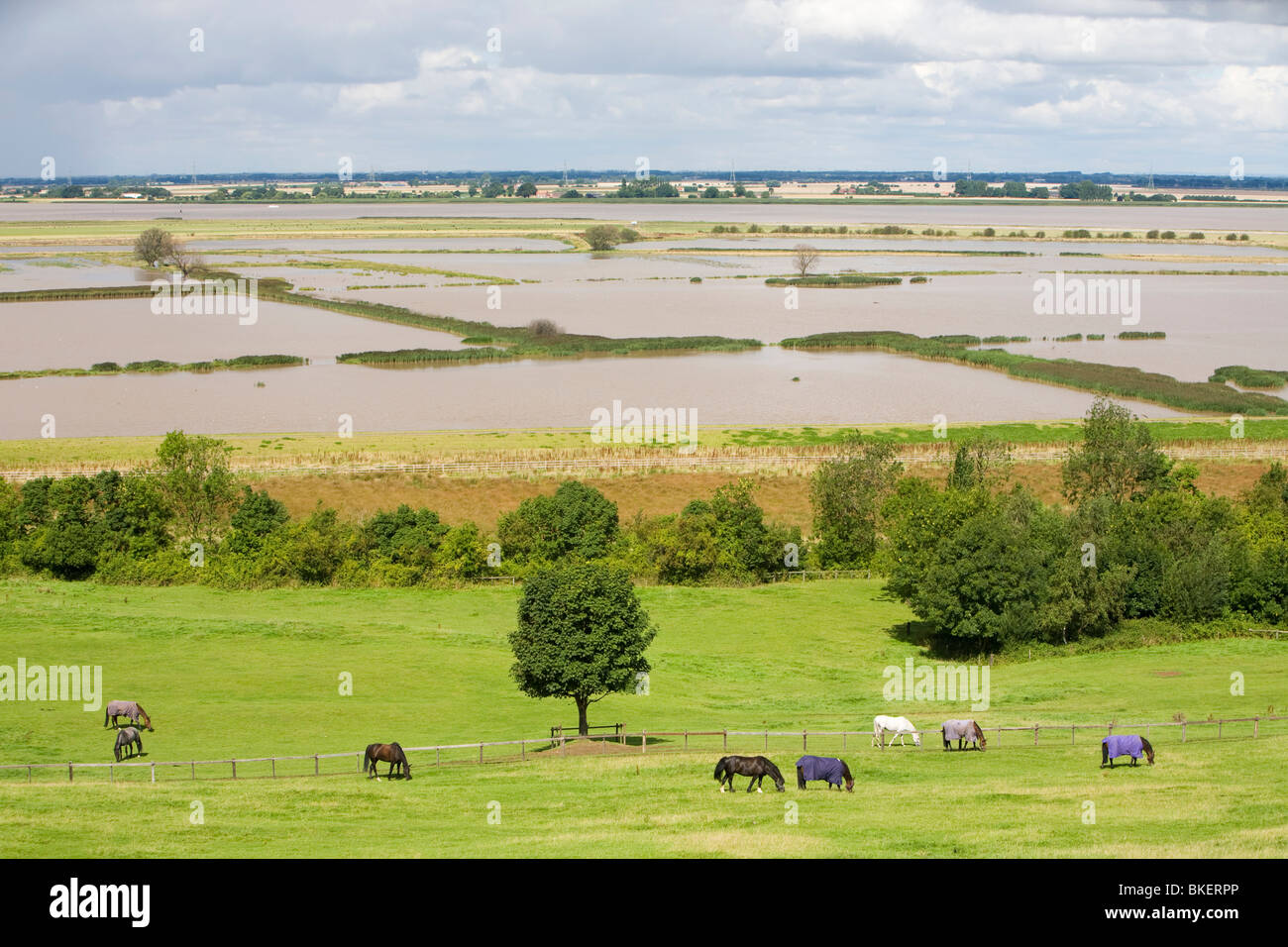Managed retreat, Breach at Alkborough on the Humber Estuary in Eastern England - Stock Image