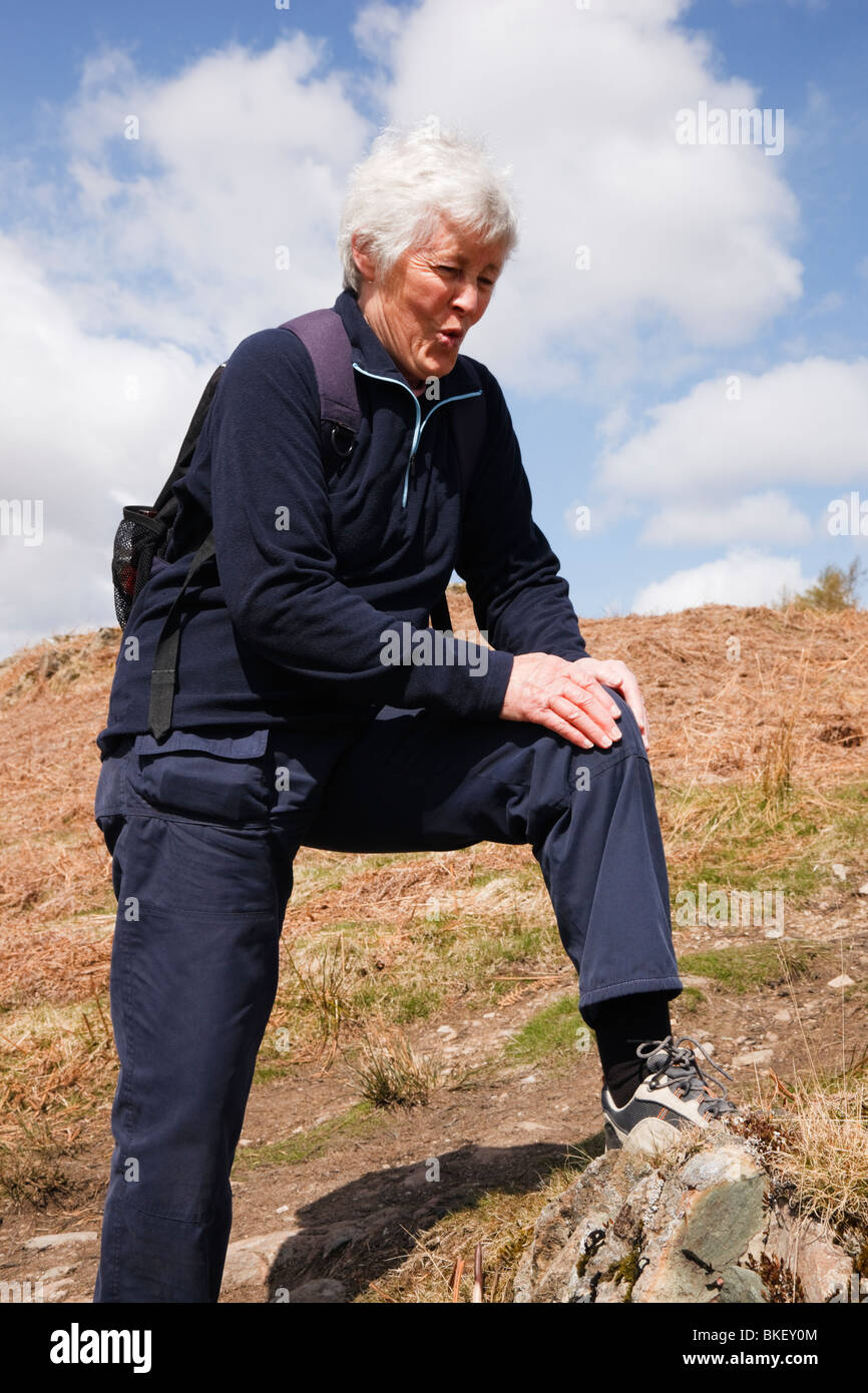 Active senior woman walker rubbing a very sore knee after walking exercise. England, UK, Britain. - Stock Image