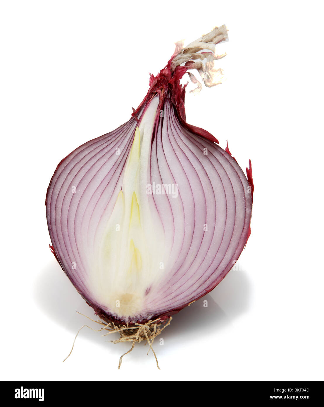 Red onion cut in half - Stock Image