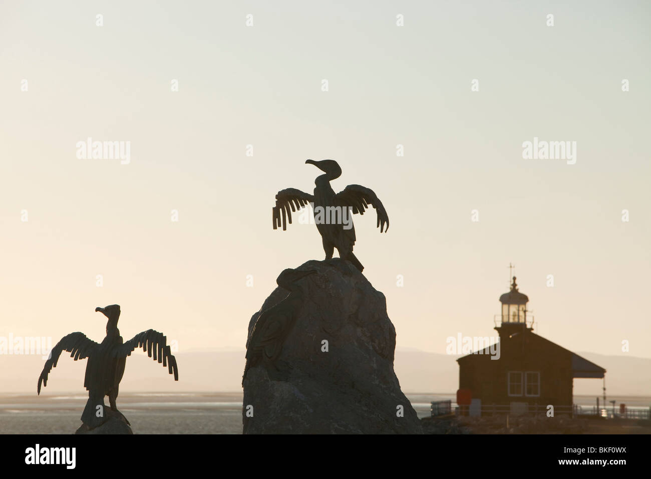 Cormorant statues on Morecambe's sea front promenade as part of the Tern project, a regeneration project. - Stock Image