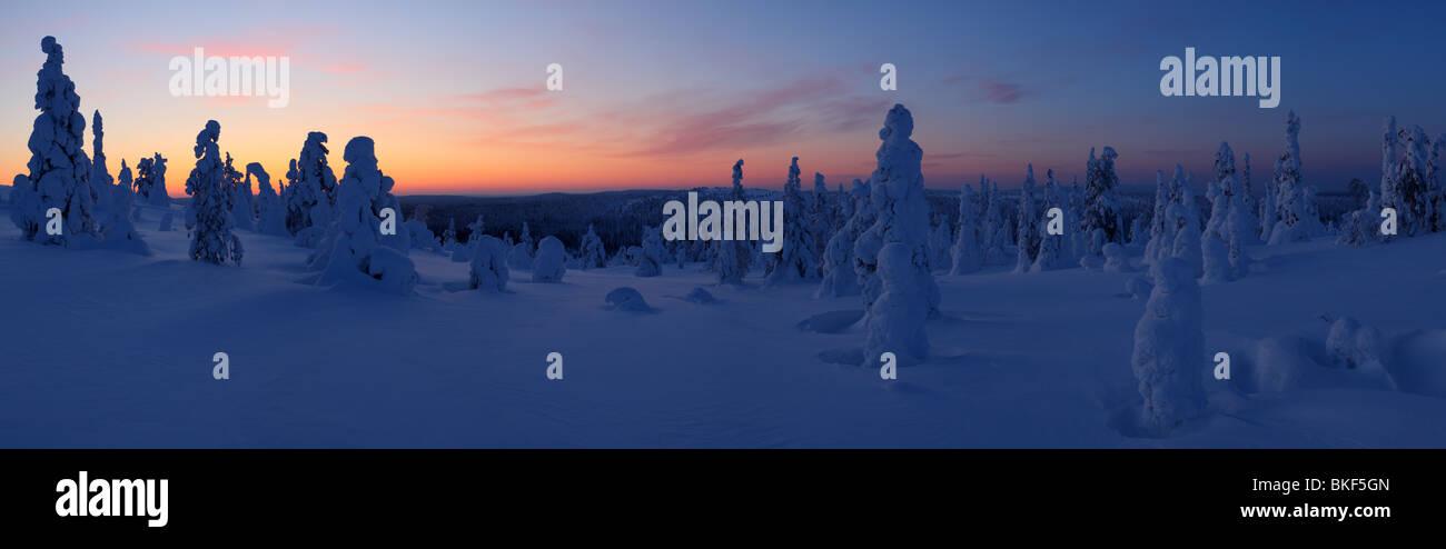 Panorama shot of Riisitunturi National Park, Lapland, Finland. Feb 2010 - Stock Image