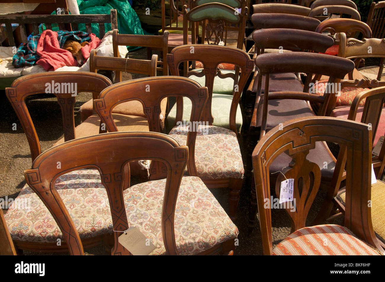 Restored old chairs. - Stock Image