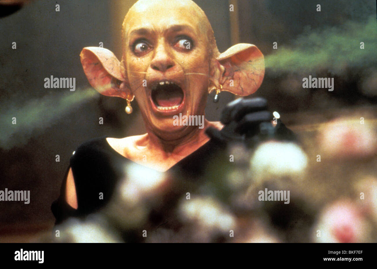 THE WITCHES -1990 - Stock Image