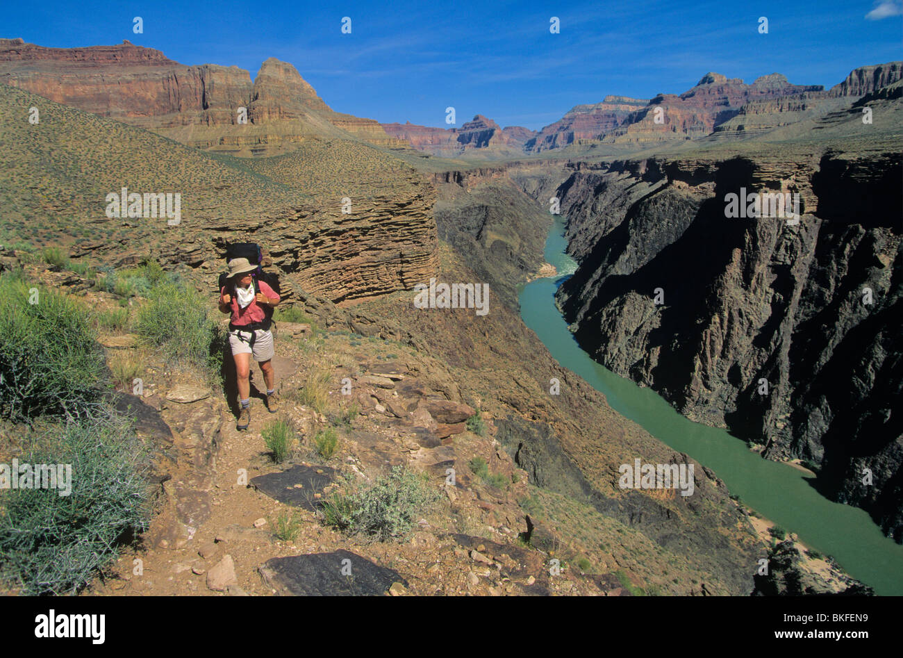 Backpacking on Tonto Trail in the Travertine Canyon area, Grand Canyon National Park, Arizona, USA - Stock Image