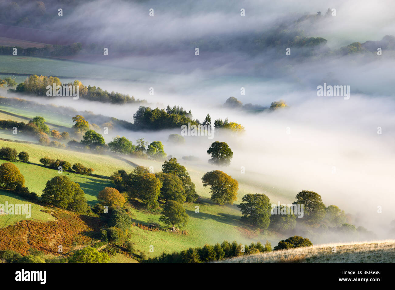 Mist covered rolling countryside in the Usk Valley, Brecon Beacons National Park, Powys, Wales, UK. Autumn (October) - Stock Image
