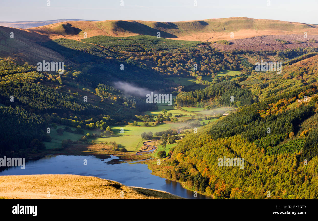 Talybont Reservoir and Glyn Collwn valley in the Brecon Beacons National Park, Powys, Wales, UK. Autumn (October) - Stock Image
