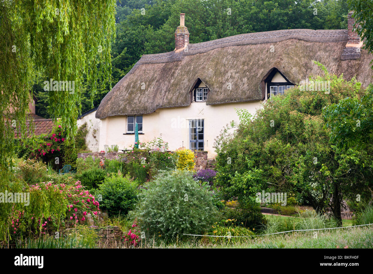 Pretty thatched cottage near Crediton, Devon, England. Summer (July) 2009 - Stock Image