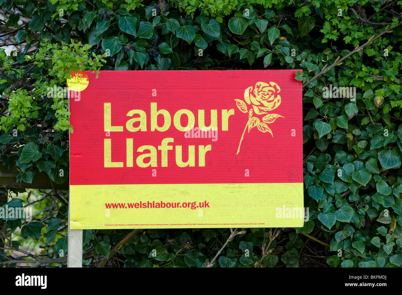 Welsh Labour Party sign being displayed during a General Election - Stock Image